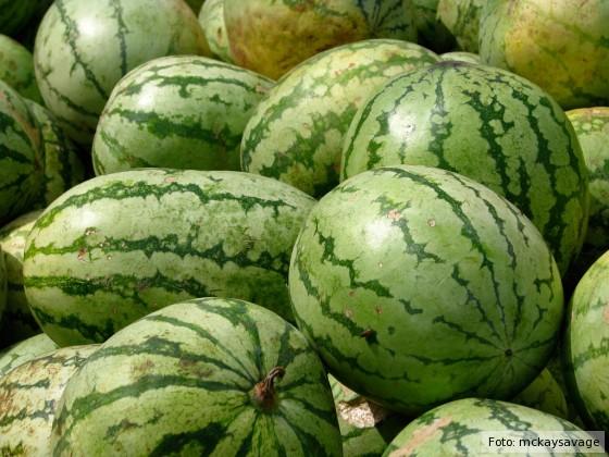 Ganze Wassermelonen