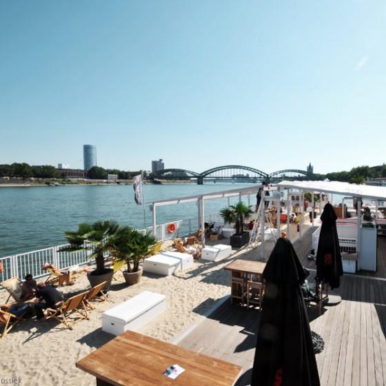 Monkey's Island Köln