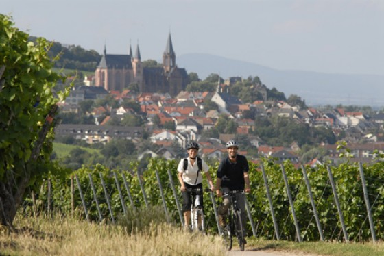 Radler mit Oppenheim und der Katharinenkirche im Hintergrund