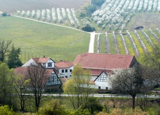 Geistermühle in Uffhofen