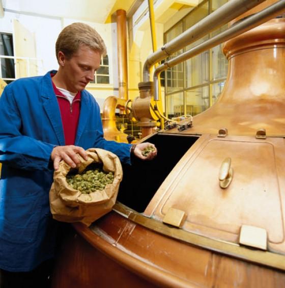 Bayern Hopfen Bierproduktion