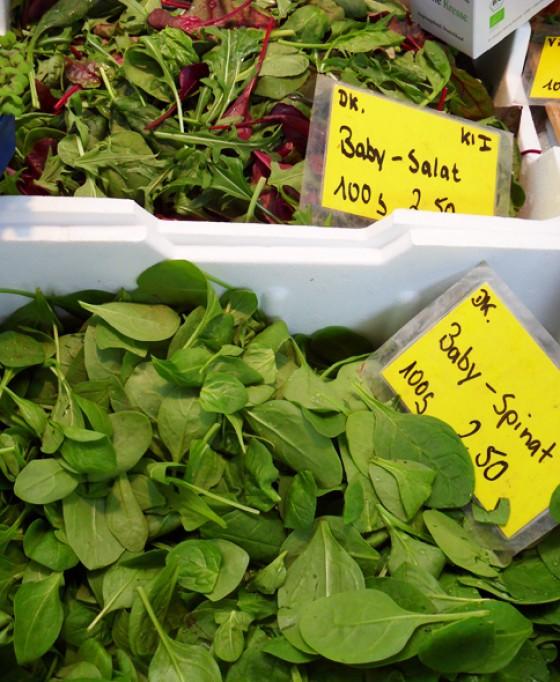 Junger Spinat Vierländer Gemüse Isemarkt