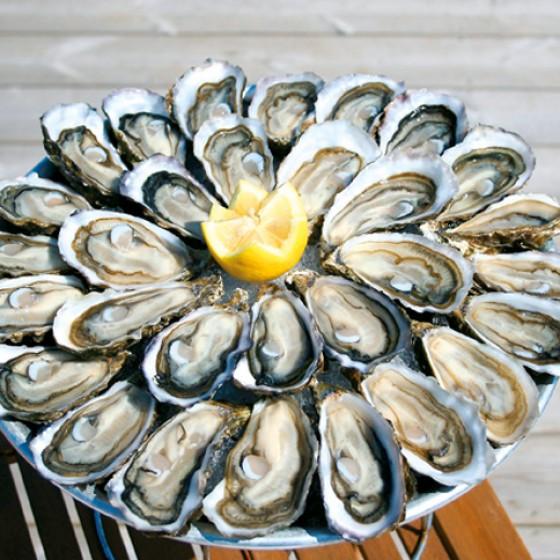 Austern aus Arcachon