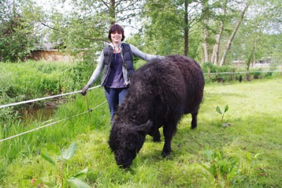 Judith Reinhard ist besonders stolz auf ihren Zuchtbullen Ultra Big.