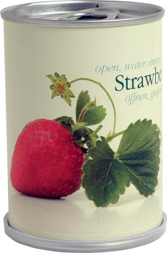 Erdbeere in der Dose