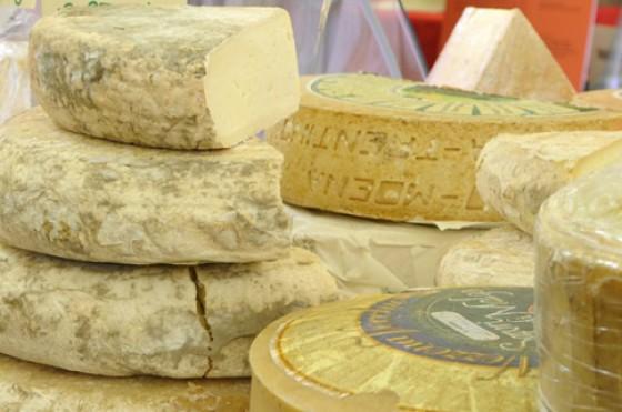 Käsefestival Südtirol, presidi-Käse aus dem Trentino