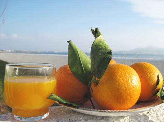 Orangen und Orangensaft Strand