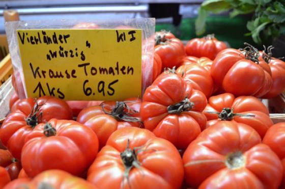 Vierländer Krause Tomaten Marktstand
