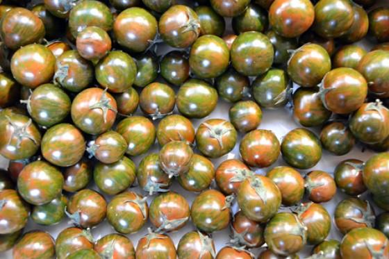 Safari Tomaten