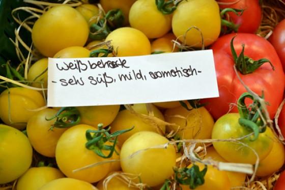 Weiß behaarte Tomaten