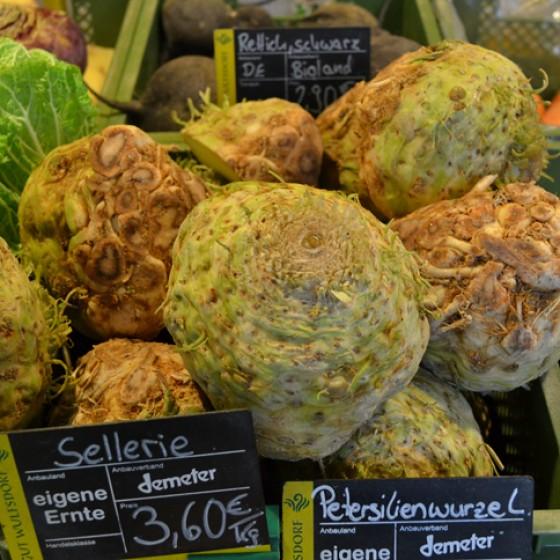 Knollensellerie Wochenmarkt Herbst 2012