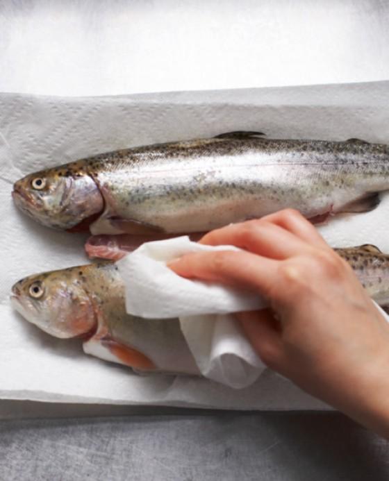 Fisch trocken tupfen
