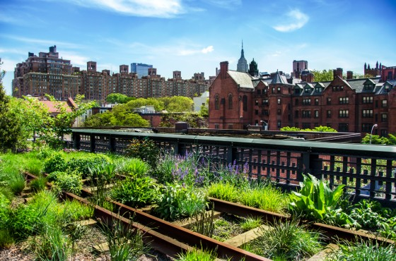 Urban Garden NY High Line Park