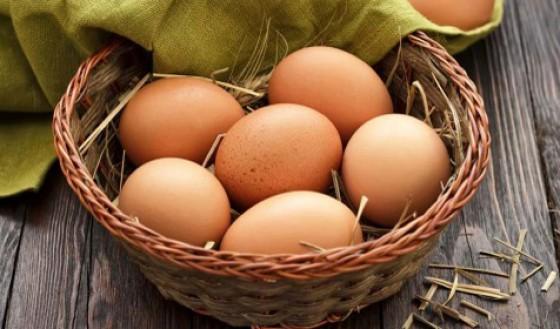 Beliebtes Nahrungsmittel: Eier