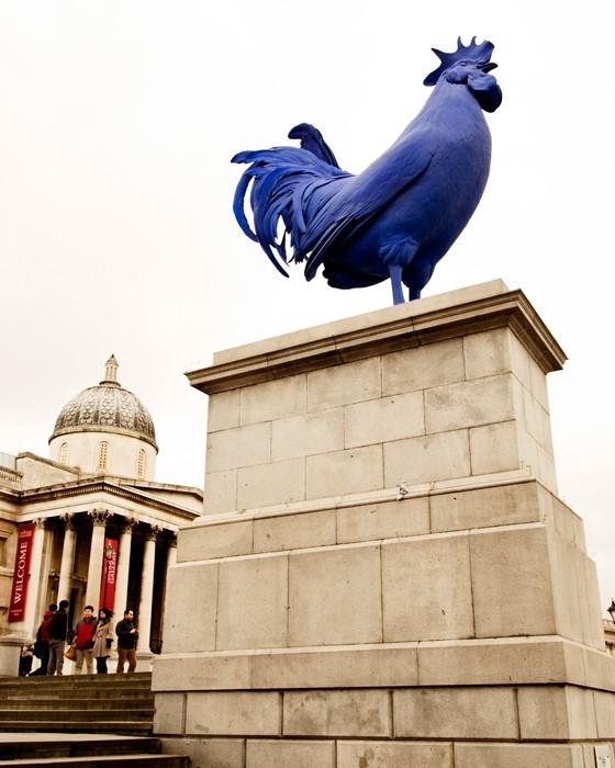 London Gockel Trafalgar Square