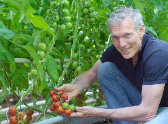 Tomatenfest in der Demeter Gärtnerei Sannmann