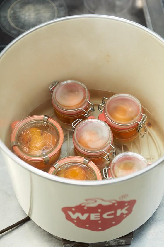 Gläser-in-Einmachtopf-Aprikosen-Einmachen