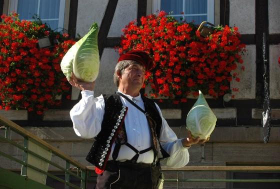 Filderkraut hat in Baden Württemberg eine lange Tradition und wird beim Filderkautfest frisch vom Feld angeboten