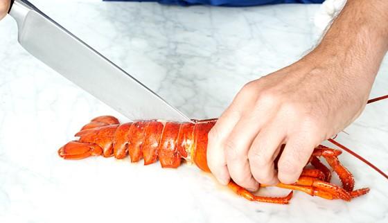 Hummer mit dem Messer halbieren