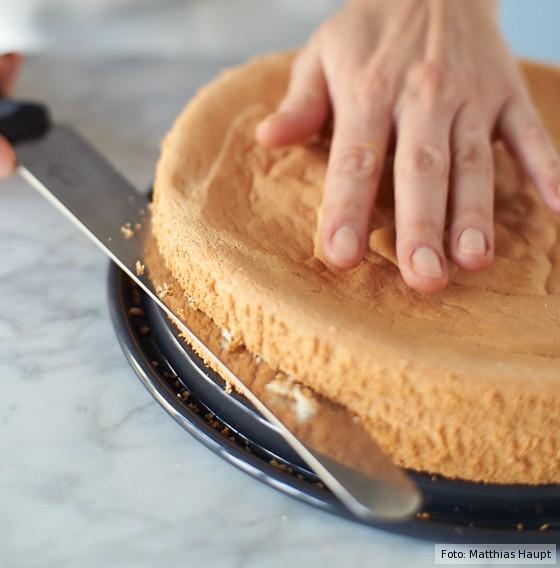 Käse-Sahne-Torte, Biskuitteig, waagerecht halbieren