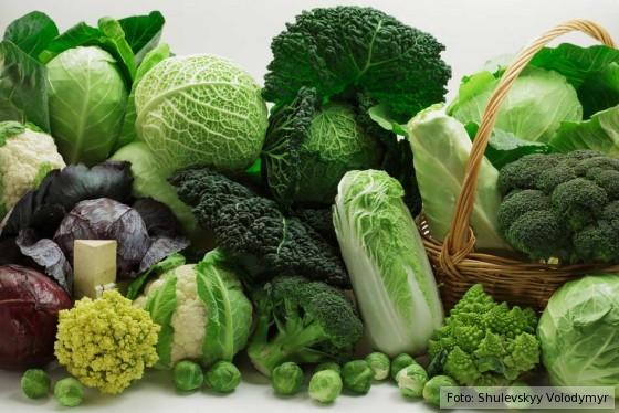 Kohlsorten, Broccoli, Brokkoli, Wirsing, Kohl, Blumenkohl, Grünkohl, Rosenkohl, Kohlrabi, Rotkohl